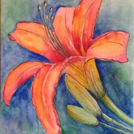 Claire Bentley - Day Lily