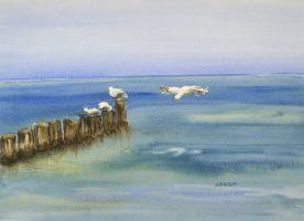 KARIN SEBOLKA - Gulls Day Out