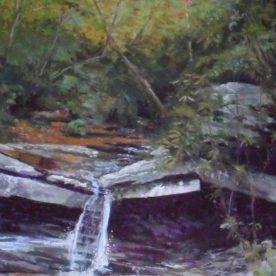 Teresa T. Brunson - PASTEL - NORTH CAROLINA HIKE