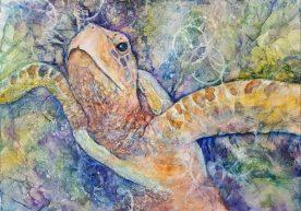 Lynn Martin - Sea Turtle