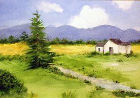 MARCIA WEIDLER - Summertime