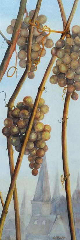 Frosty Grapes - Karin Sebolka