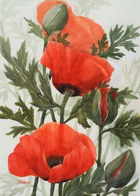 Popping Poppies - Karin Sebolka