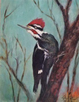 Piliated Lookout - Lynn Martin