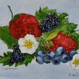 Pat Hafkemeyer - Berries Galore