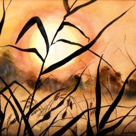 Pat Hafkemeyer - Marsh Sunset
