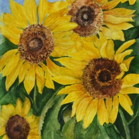 Pat Hafkemeyer - Sunshine