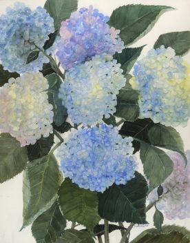 Blue Notes - Karin Sebolka