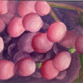 Claire Bentley - Just Grapes 1